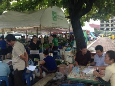 Vientiane Organic Vegetable Producer Group (2)
