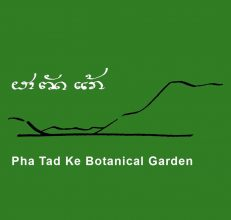 TOT training of Permaculture, 14 – 19 October, 2019, Lao PDR