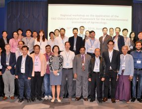 Regional workshop on the Application of the FAO Global Analytical Framework for the multidimensional assessment of Agroecology, 24-26/09/2019 Bangkok, Thailand