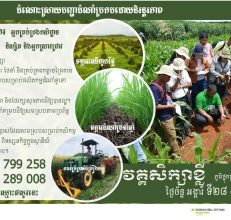 Training in Cambodia on Conservation Agriculture, 28-29 September 2020