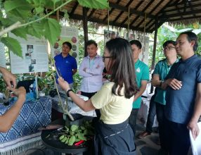 TOT training of permaculture, February 18 – 23, 2019, Laungprabang Province, Lao PDR