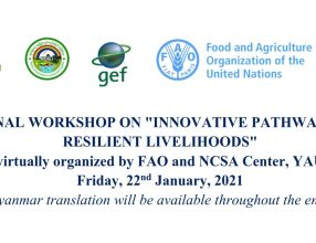 """National workshop on """"Innovative Pathways to Climate Resilient Livelihoods"""", Myanmar, 22 January 2021"""