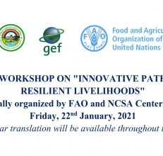 "National workshop on ""Innovative Pathways to Climate Resilient Livelihoods"", Myanmar, 22 January 2021"
