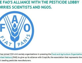 THE FAO'S ALLIANCE WITH THE PESTICIDE LOBBY WORRIES SCIENTISTS AND NGOS.