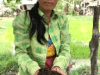 Vegetable growing with agroecological practices, Cambodia