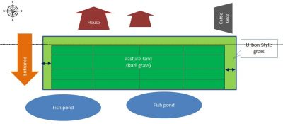 AE Land location & Transect Landscape