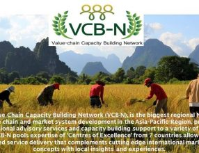 "Proceedings of VCB-N Webinar 1: ""The impact of the Covid-19 pandemic on agricultural value chains – What we can do to mitigate the impact!"""